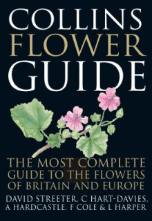 Collins Flower Guide av David Streeter (Innbundet)