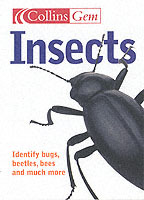 Insects av Michael Chinery (Heftet)