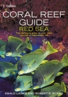 Coral Reef Guide Red Sea av Ewald Lieske og Robert F. Myers (Heftet)