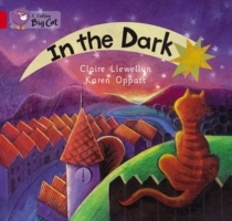 Collins Big Cat: In the Dark: Band 02A/Red A av Claire Llewellyn (Heftet)