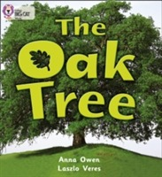 Collins Big Cat: The Oak Tree: Band 02B/Red B av Anna Owen (Heftet)