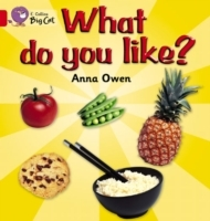 Collins Big Cat: What Do You Like?: Band 02B/Red B av Anna Owen (Heftet)