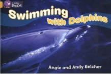 Swimming with Dolphins av Angie Belcher og Andy Belcher (Heftet)