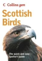 Scottish Birds av Valerie Thom (Heftet)