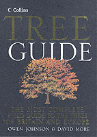 Collins Tree Guide (Heftet)