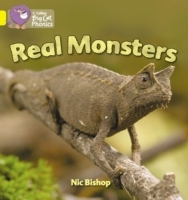 Collins Big Cat Phonics: Real Monsters: Band 03/Yellow av Nic Bishop (Heftet)