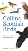 Collins Scottish Birds av Valerie Thom (Heftet)