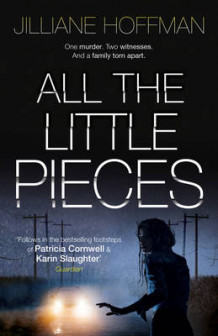 All the Little Pieces av Jilliane Hoffman (Innbundet)