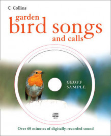 Garden Bird Songs and Calls av Geoff Sample (Innbundet)