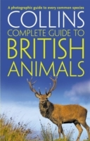 Collins Complete Guide: Collins Complete British Animals: A Photographic Guide to Every Common Species av Paul Sterry (Heftet)