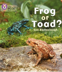Frog or Toad? av Sue Barraclough (Heftet)