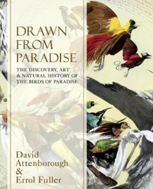 Drawn From Paradise av Sir David Attenborough og Errol Fuller (Innbundet)