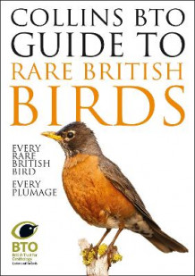 Collins BTO Guide to Rare British Birds av Paul Sterry og Paul Stancliffe (Heftet)