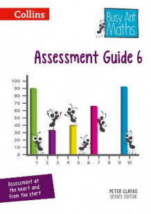 Assessment Guide 6 av Peter Clarke (Spiral)