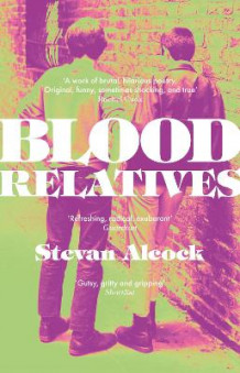 Blood Relatives av Stevan Alcock (Heftet)