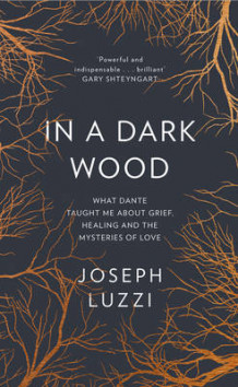 In a Dark Wood: What Dante Taught Me About Grief, Healing, and the Mysteries of Love av Joseph Luzzi (Innbundet)