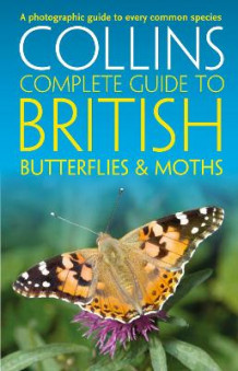 Collins Complete Guides: British Butterflies and Moths av Paul Sterry, Andrew Cleave og Rob Read (Heftet)
