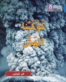 Collins Big Cat Arabic Readers: Fragile Earth: Level 16 av Claire Llewellyn (Heftet)