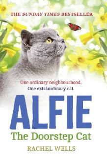 Alfie the Doorstep Cat av Rachel Wells (Heftet)