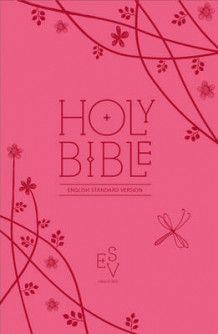 Holy Bible (Praktinnbinding)