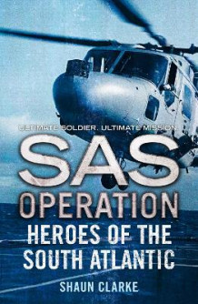 Heroes of the South Atlantic av Shaun Clarke (Heftet)
