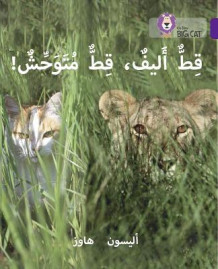 Collins Big Cat Arabic Readers: Tame Cat, Wild Cat: Level 8 av Alison Hawes (Heftet)