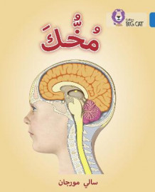 Collins Big Cat Arabic Readers: Your Brain: Level 16 av Sally Morgan (Heftet)