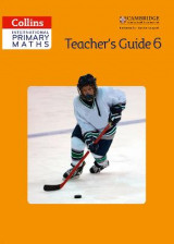 Omslag - Teacher's Guide 6