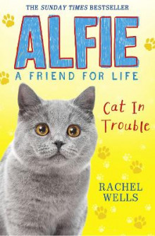 Alfie Cat In Trouble av Rachel Wells (Heftet)