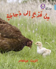 Collins Big Cat Arabic Readers: Chick to Hen: Level 7 av Elspeth Graham (Heftet)