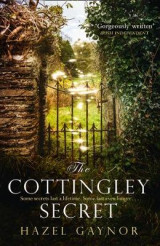 Omslag - The Cottingley Secret
