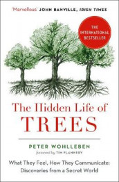 The Hidden Life of Trees av Peter Wohlleben (Heftet)