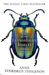 Extraordinary insects av Anne Sverdrup-Thygeson (Heftet)