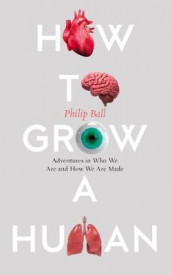 How to Grow a Human av Philip Ball (Innbundet)