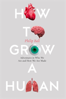 How to Grow a Human av Philip Ball (Heftet)