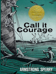 Call it Courage av Armstrong Sperry (Heftet)
