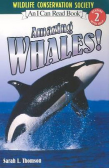 I Can Read Amazing Whales av Sarah L Thomson (Heftet)