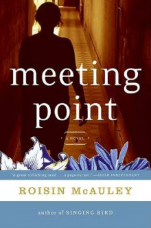 Meeting Point av Roisin McAuley (Heftet)