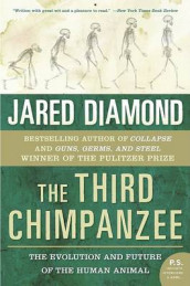 The Third Chimpanzee av Jared M Diamond (Heftet)
