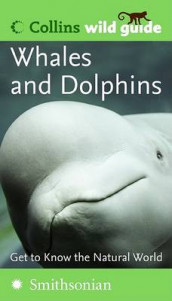Whales and Dolphins (Collins Wild Guide) av Mark Carwardine (Heftet)