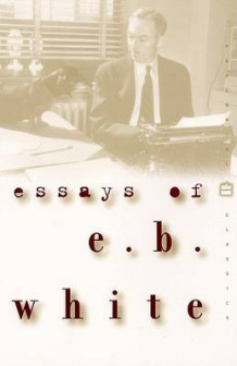 Essays of E.B. White av E. B. White (Heftet)
