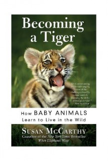 Becoming A Tiger: How Baby Animals Learn To Live In The Wild av Susan McCarthy (Heftet)