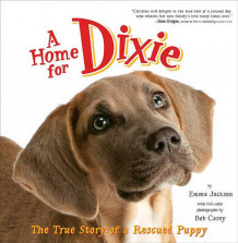 A Home for Dixie av Emma Jackson (Heftet)