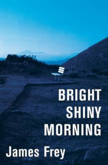 Bright Shiny Morning av James Frey (Innbundet)