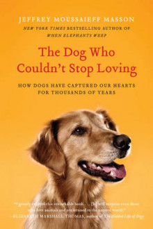 The Dog Who Couldn't Stop Loving av Jeffrey Moussaieff Masson (Heftet)