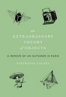 An Extraordinary Theory of Objects av Stephanie LaCava (Innbundet)