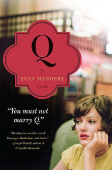 Q: A Novel av Evan Mandery (Heftet)
