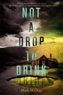 Not a Drop to Drink av Mindy McGinnis (Innbundet)
