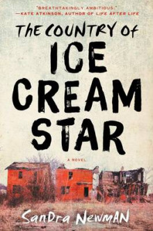 The Country of Ice Cream Star av Sandra Newman (Innbundet)