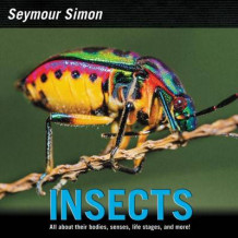 Insects av Seymour Simon (Innbundet)